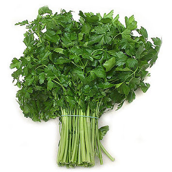 Smooth parsley